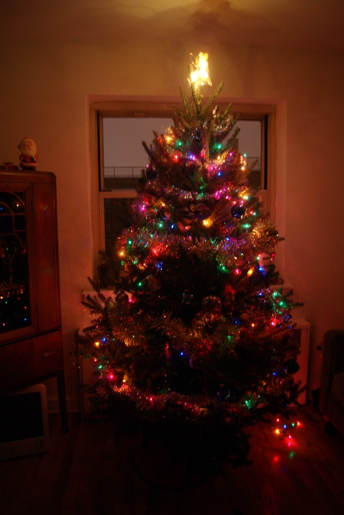 This is our Christmas tree. It may not seem like much, but it brings me a disturbing amount of joy.